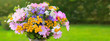 Bouquet colorful wild flowers . Holiday background.