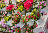 Fresh colorful Flowers put in vases - 173942312