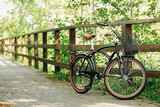 Pretty retro bicycle with busket in park. - 173989926