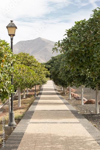 Fotobehang Canarische Eilanden Walkway Playa Blanca