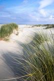Nordsee, Strand auf Langenoog: Dünen, Meer, Entspannung, Ruhe, Erholung, Ferien, Urlaub, Meditation :)