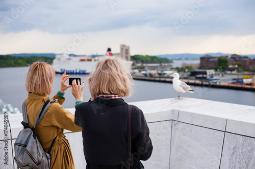 Two young stylish girls take pictures of a bird seagull Poster