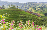 Idyllic Chinese village in Longji rice terraces. - 174054753