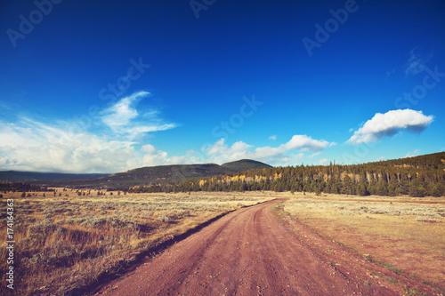 Fotobehang Galyna A. Autumn meadow