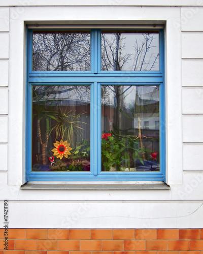 Staande foto Berlijn Berlin Germany, blue frame window with fake sunflower