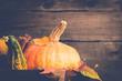 Pumpkin and cinnamon closeup. Autumn background. Thanksgiving or Halloween concept, copy space