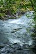 Beautiful stream of water, waterfall, stones, green grass
