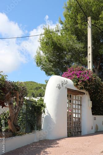 Stupenda vista del panorama dell'isola di Ibiza