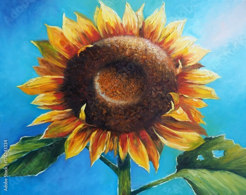 Original oil painting on canvas - Sunflower - Modern Art © shvets_tetiana