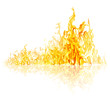 Quadro high yellow fire with reflection on white