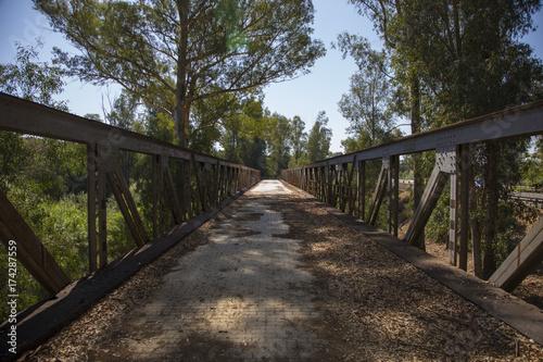 Keuken foto achterwand Weg in bos Viejo puente de hierro