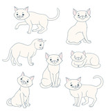 white cartoon cat in various poses vector illustration