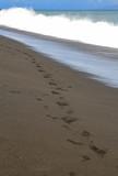 Bali: Stürmischer Wellengang am schwarzen Sandstrand bei Klungkung-Kusamba - 174317360