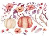 Big watercolor set with pumpkins, flowers and feathers. Also this set includes horns and branches. Hand drawn watercolor illustration - 174321796