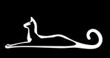 White stylized cat on black background. Vector isolated for logo or icon. Decorative doodle image.