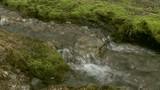 Alpine Stream 3 - 174383385