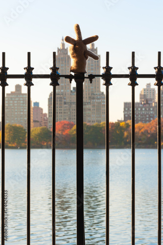 Lost glove hanging on a fence in Central Park, New York City, USA Poster