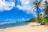 Rock formation on the beach of Bathsheba, East coast of  island Barbados, Caribbean Islands - travel destination for vacation