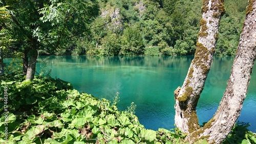 Spoed canvasdoek 2cm dik Olijf Lac de Plitvice
