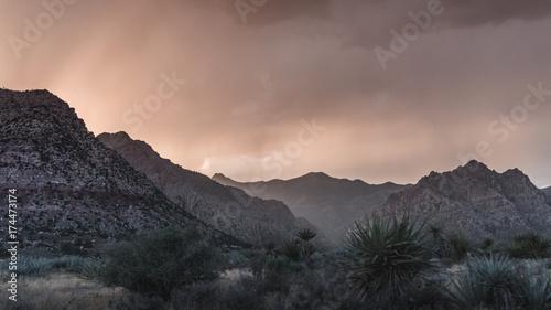 Poster Grijze traf. Redrock Canyon View