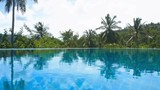 Swimming Pool Surface with Palm Trees - 174529772