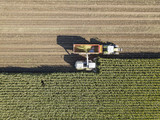 Aerial view of a harvest scene - 174541395