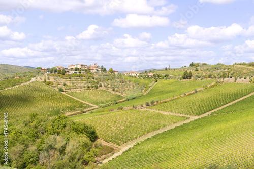 Poster Oceanië Chianti vineyards
