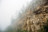 Rocky Mountains with trees in moody foggy morning - 174577946
