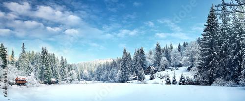 Зимний лес в Карпатах на озере Vito