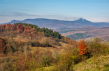 autumn forest on hill in high mountains. beautiful nature scenery with high peak in a distance - 174673392