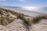 Les dunes du Marquenterre à Fort-Mahon.  - 174674742