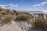 Les dunes du Marquenterre à Fort-Mahon.  - 174674747