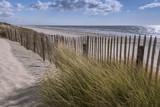Les dunes du Marquenterre à Fort-Mahon.  - 174674749