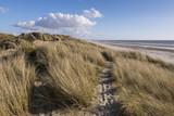 Les dunes du Marquenterre à Fort-Mahon.  - 174674762