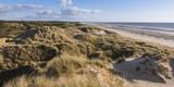 Les dunes du Marquenterre à Fort-Mahon.  - 174674784