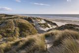 Les dunes du Marquenterre à Fort-Mahon.  - 174674796