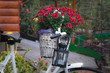 still life with old ladys bike and bouquet