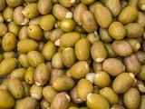 Oliven Spanien Textur - 174713197