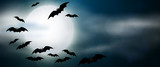 Night, full moon and bats, horizontal banner. Colorful scary Halloween illustration. Vector - 174720525