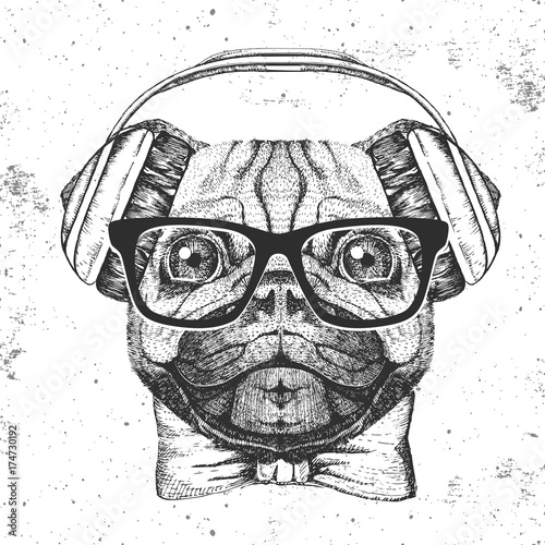 Retro Hipster animal pug-dog. Hand drawing Muzzle of pug-dog