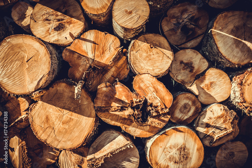 Tuinposter Brandhout textuur Background of Stacked wood pine timber for construction buildings
