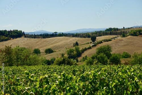 In de dag Blauwe hemel Tuscan countryside