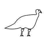Turkeycock  it is black icon .