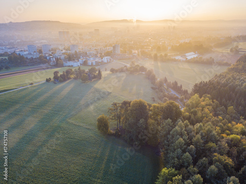 Staande foto Khaki Aerial view of forest in morning light during sunrise