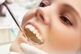 Odontology. - 174760357