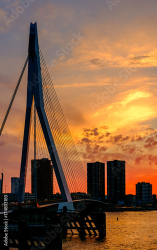 Fotobehang Rotterdam Rotterdam city cityscape with Erasmus bridge at sunset