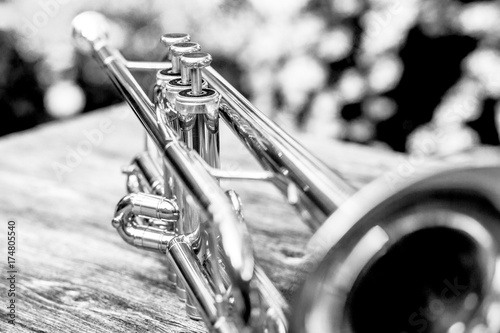 Trumpet in black and white Poster