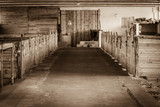 Sepia shot of horse stable interior - 174866354