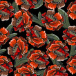 Seamless floral pattern with poppies - 174866957