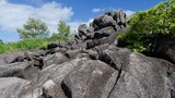 Blocs de granit, île Curieuse, Seychelles - 174870726